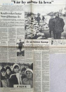 DN 4 nov 1979