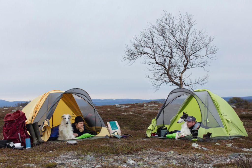 elektriska krok upp leder för tält